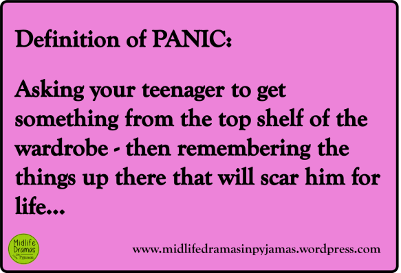 A funny MEME from Midlife Dramas in Pyjamas, the definition of panic!
