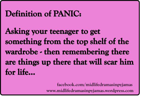 A funny MEME about the true meaning of the word PANIC, from humour blogger Midlife Dramas in Pyamas