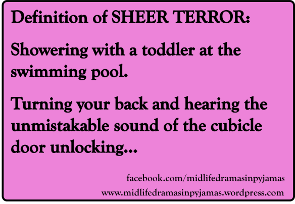A funny MEME giving the true definition of SHEER TERROR, from humour blogger Midlife Dramas in Pyjamas