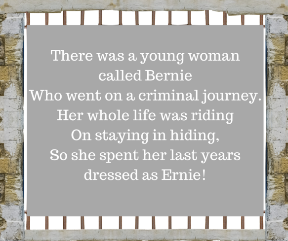 A funny limerick from humour blogger, Midlife Dramas in Pyjamas